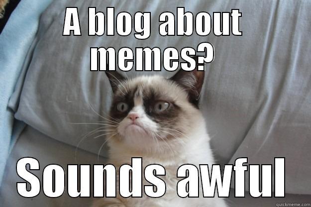 i Love You Cat Meme Love 39 em or Hate 39 em Memes